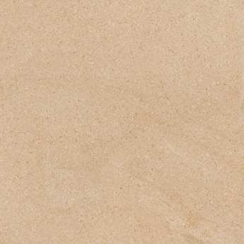 dCanary Beige
